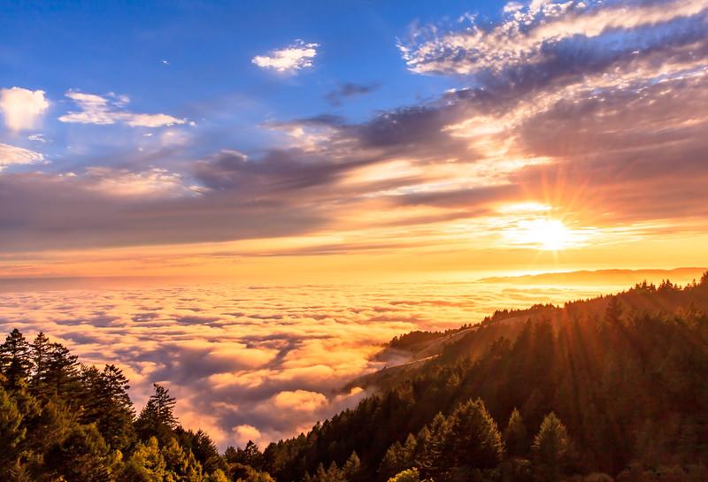 Golden Sunlight above a Sea of Fog
