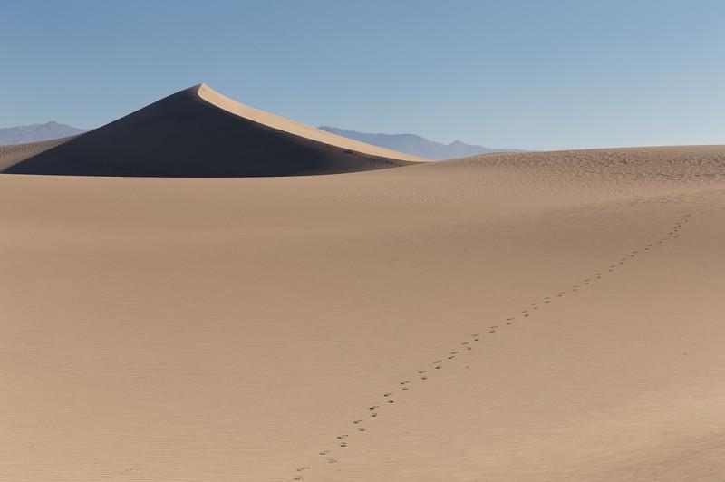 Footprints, Mesquite Flat Dunes, CA