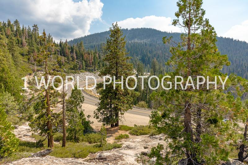 San Fran_Lake Tahoe Trip 2017-1470-82.jpg