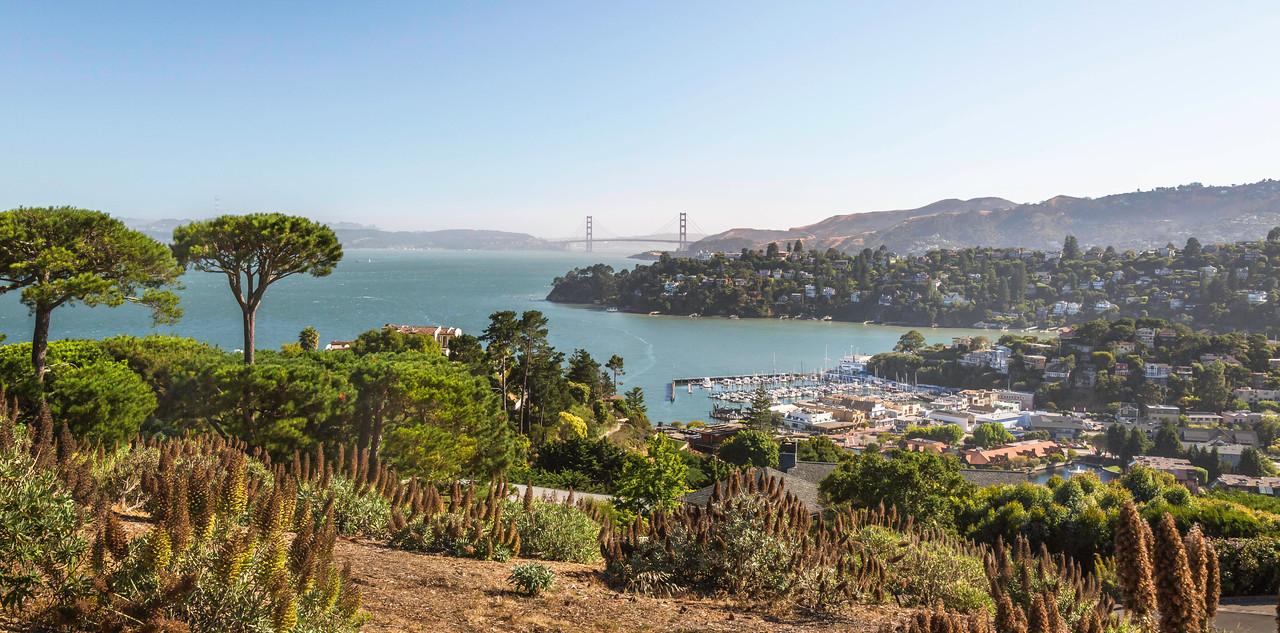 Golden Gate Bridge viewed from Tiburon.