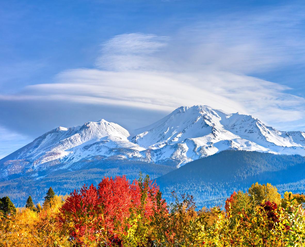 1307 Mt. Shasta