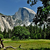 Half Dome, Yosemite National Park,Ca<br /> Photo # 62