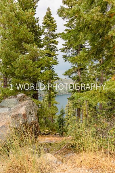 San Fran_Lake Tahoe Trip 2017-109-7.jpg