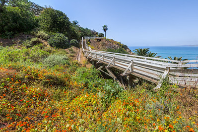 Footbridge in La Jolla, San Diego, California