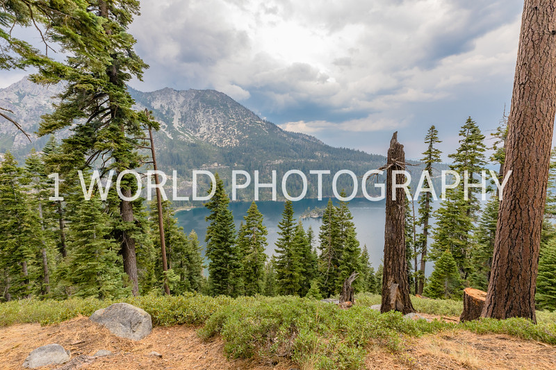 San Fran_Lake Tahoe Trip 2017-219-24.jpg