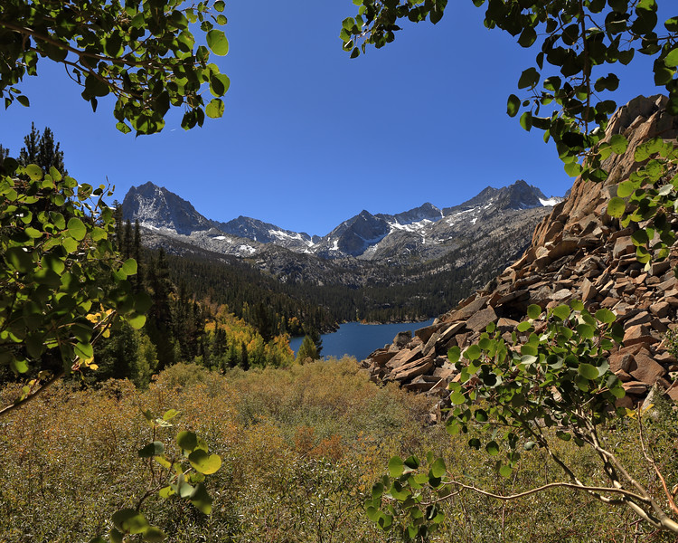 Aspen Leaves and South Lake, Inyo County, CA