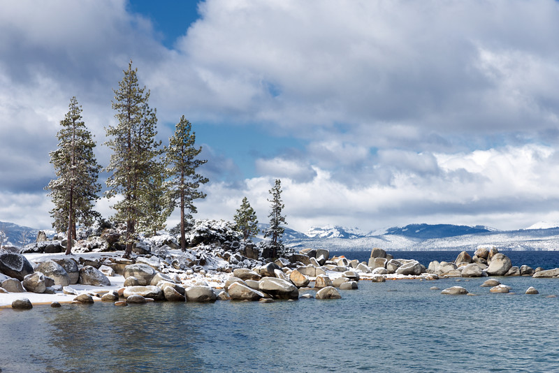 Trees and Snow, Sand Harbor, NV