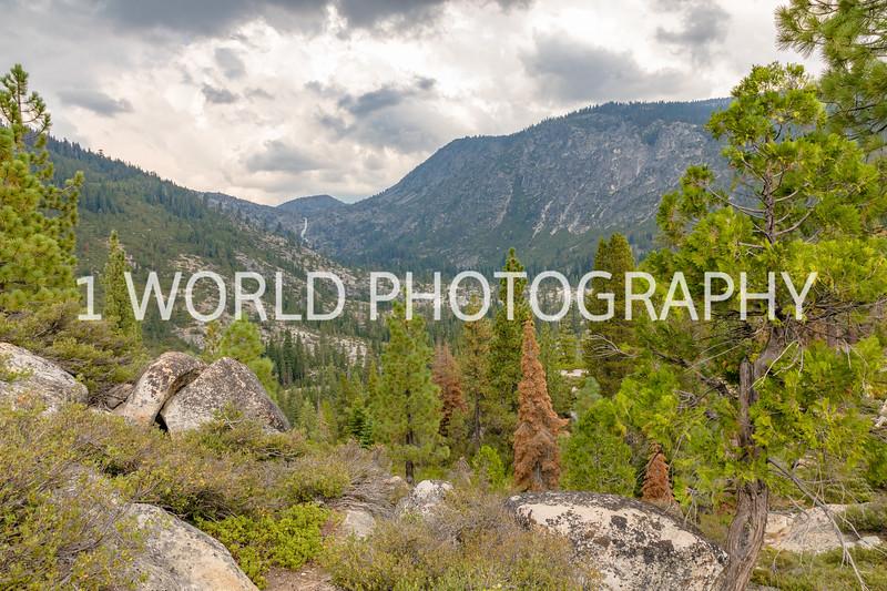 San Fran_Lake Tahoe Trip 2017-1581-93.jpg