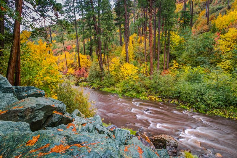 Fall in Sierra Foothills