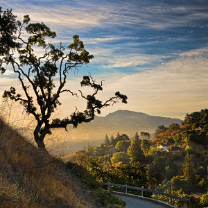 "Mt. Diablo. View from Briones Park. 14""x14"" edit"