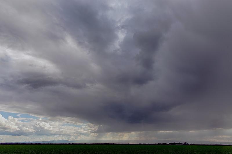 Thunderstorm and Alfalfa, San Joaquin County, CA