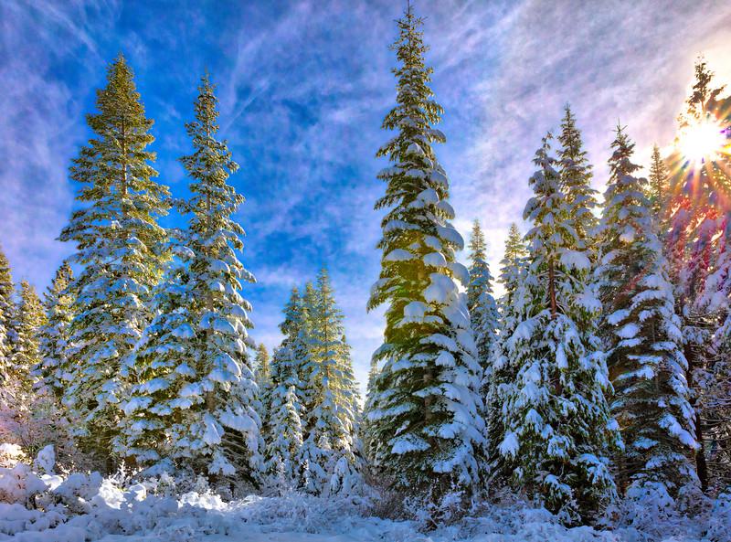 5804 Snow