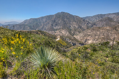 Angeles National Forest, California