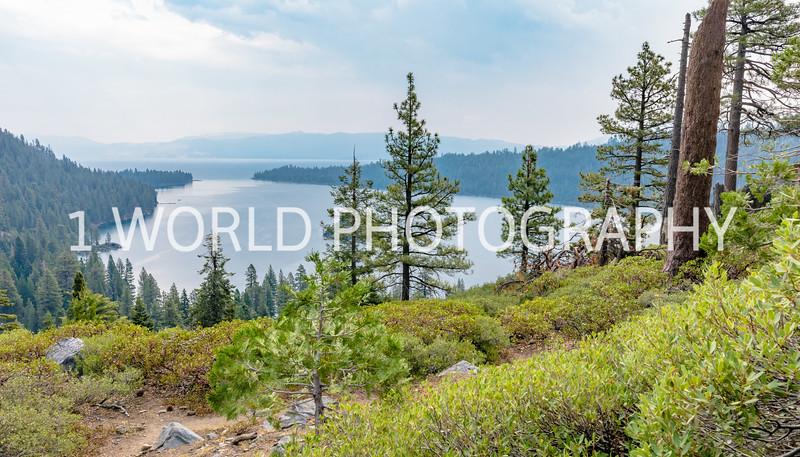 San Fran_Lake Tahoe Trip 2017-264-26.jpg