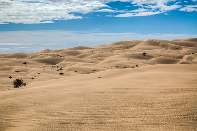 Sand Dunes in Winterhaven, California, USA
