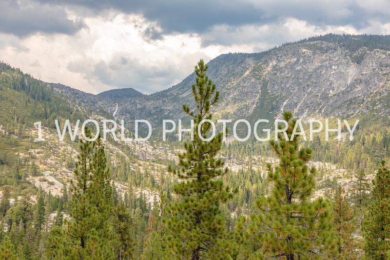 San Fran_Lake Tahoe Trip 2017-1610-94.jpg
