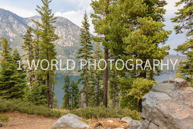 San Fran_Lake Tahoe Trip 2017-105-5.jpg