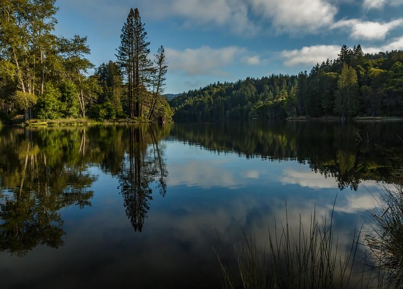 Loch Lomond Morning II
