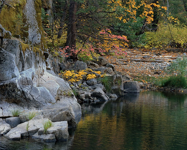 Autumn Leaves and Merced River, Mariposa County, California