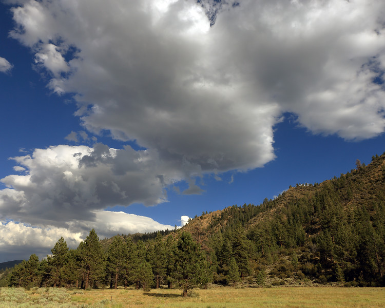 Summer Clouds, Devil's Gate Pass, Mono County, CA