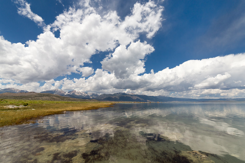 Summer Clouds and Reflections, Mono County, CA