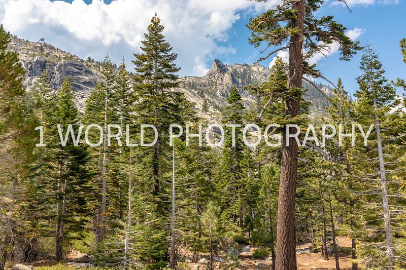 San Fran_Lake Tahoe Trip 2017-1343-73.jpg