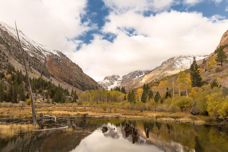 Fall 2015, Mill Creek, Mono County, CA