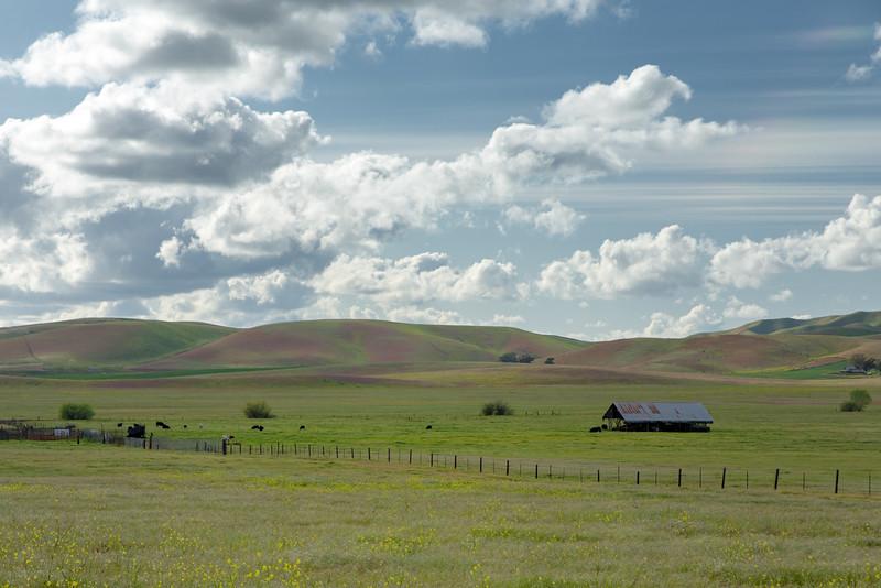 Spring Clouds and Farm, Livermore, CA