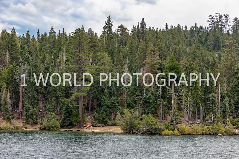San Fran_Lake Tahoe Trip 2017-743-40.jpg