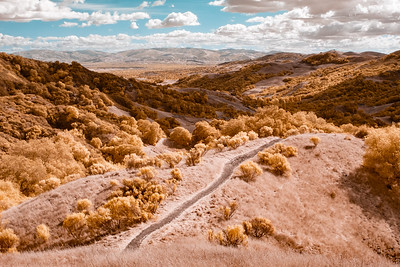 Las Trampas Regional Wilderness Park