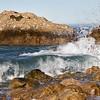Pacific Coast (164)-300