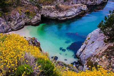 Point Lobos State Reserve, Carmel, CA