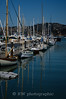 Boats Moored in Sausalito