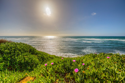 Sunset Cliffs, Point Loma, San Diego, California, USA
