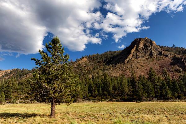 Pine and Devil's Gate Pass, Mono County, CA