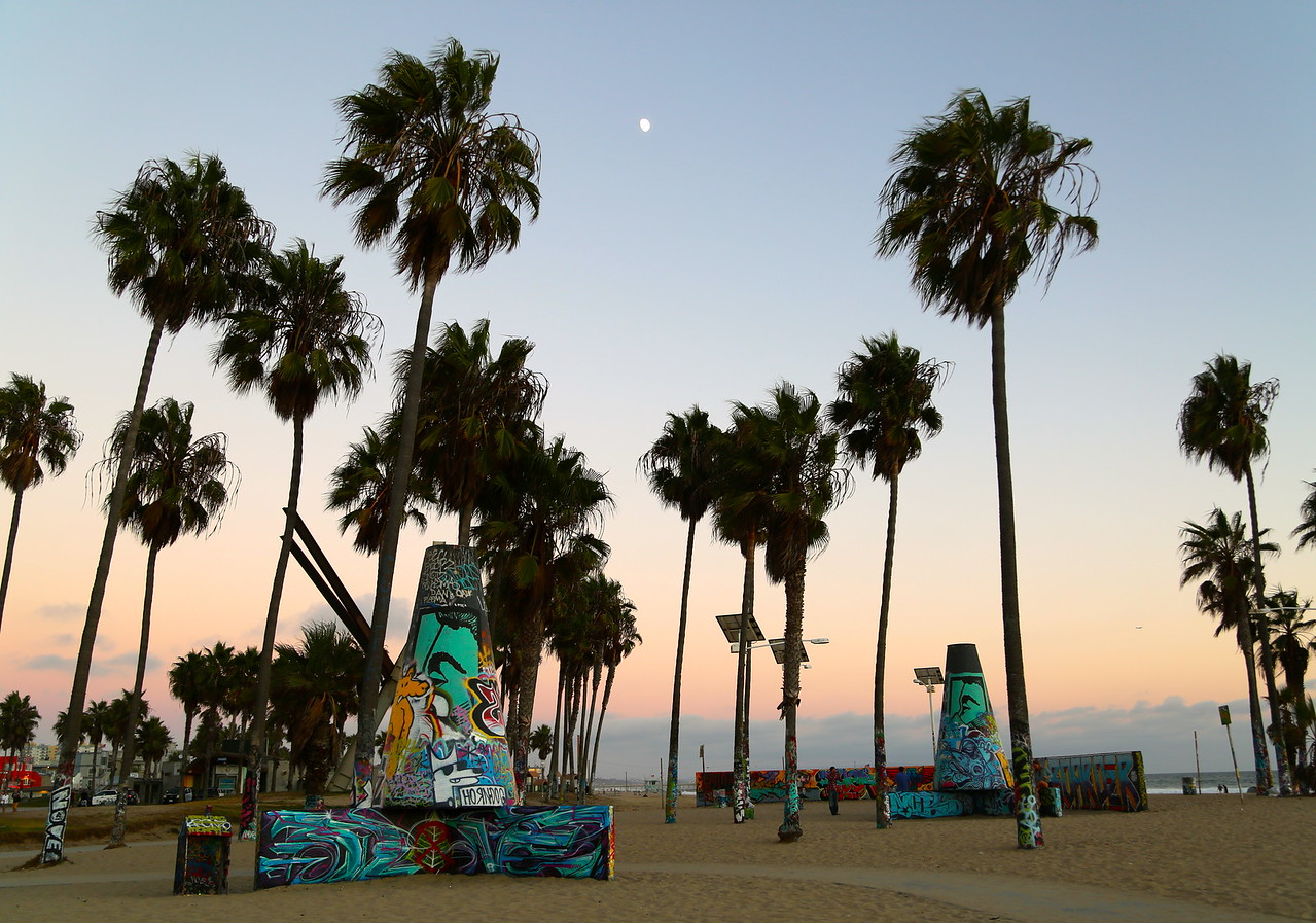 Afternoons at Venice Beach