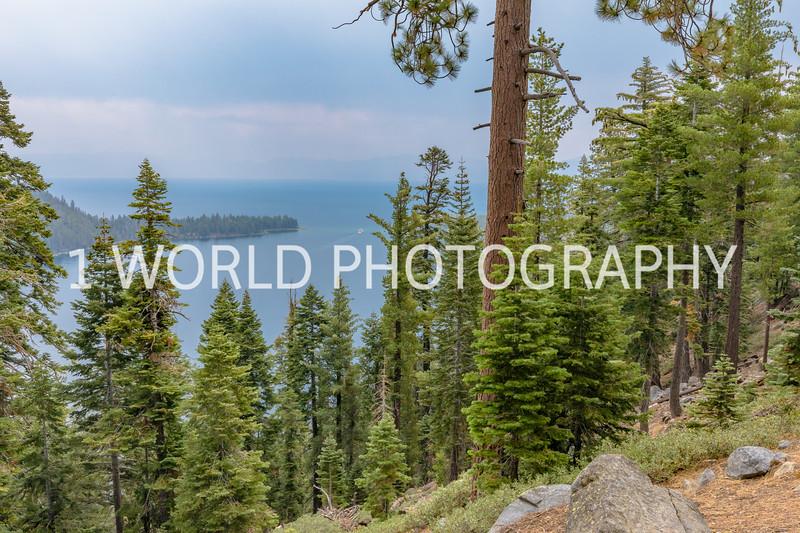 San Fran_Lake Tahoe Trip 2017-209-20.jpg