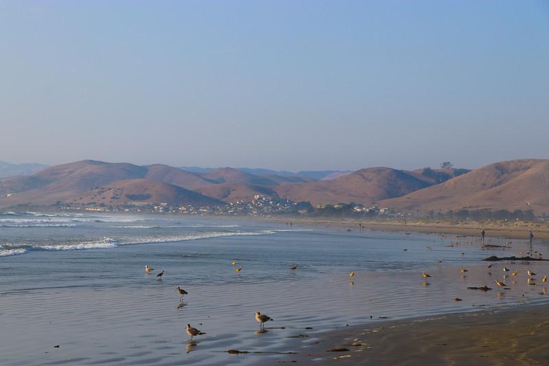 The Coast Is Calm