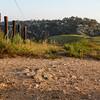 Ridgetop  Fireroad