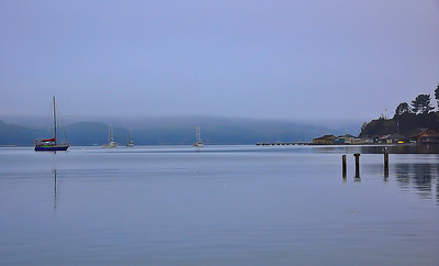 tomales-bay-boats-fog
