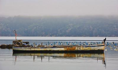 tomales-bay-boat