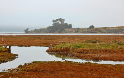 california-coastline-waterway-3