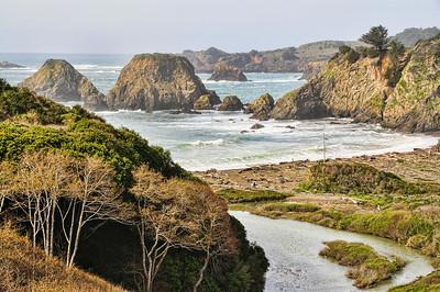 mendocino-coast-ocean-4