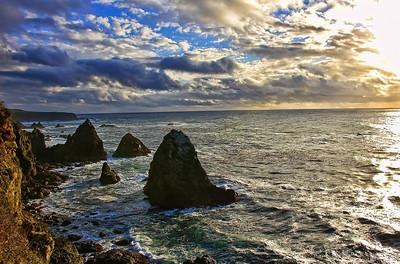 mendocino-coast-ocean-3