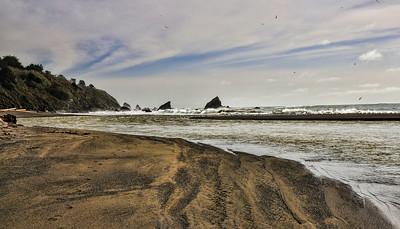 mendocino-coast-beach-7-