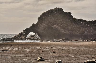 mendocino-coast-beach-6-