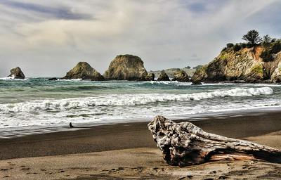 mendocino-coast-beach-4-tif