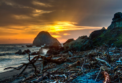 driftwood-beach-sunset-hdr