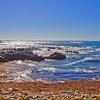 Asilomar State Beach0779
