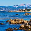 Monterey8746